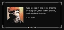quote-god-sleeps-in-the-rock-dreams-in-the-plant-stirs-in-the-animal-and-awakens-in-man-ibn-ar...jpg